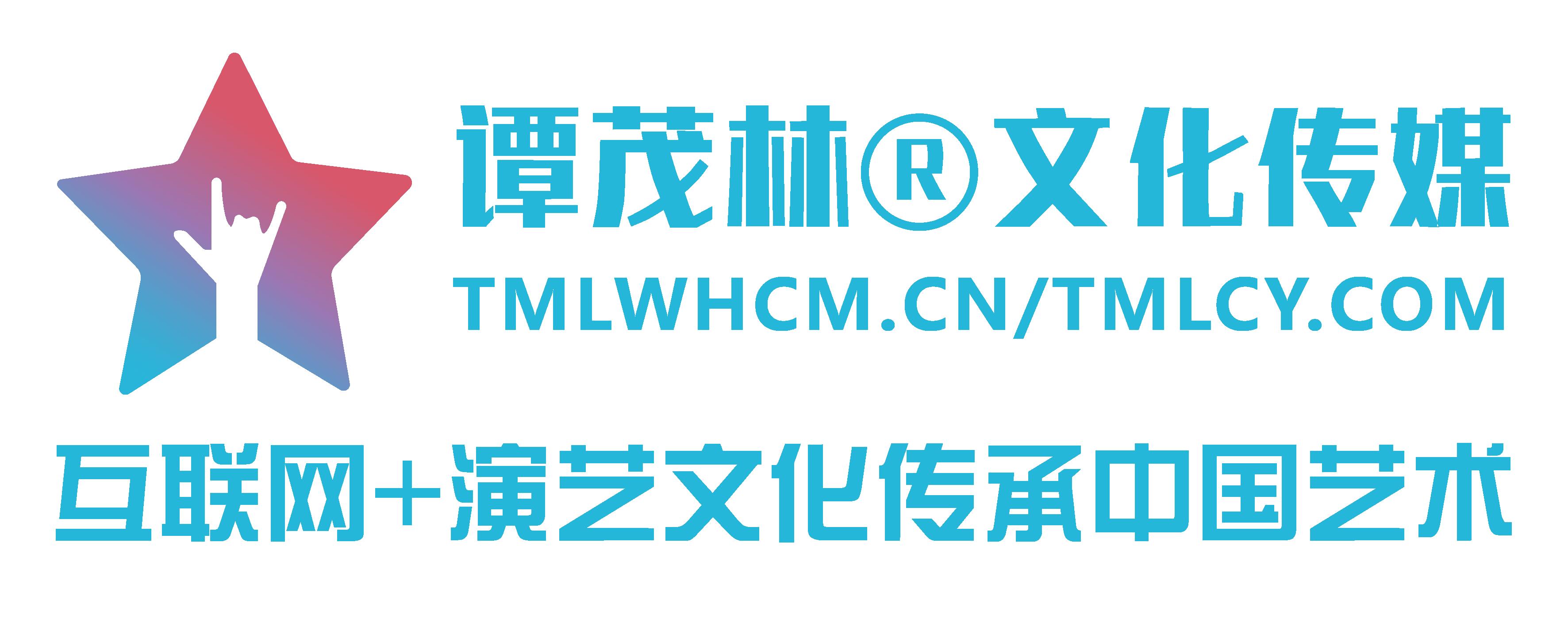 谭茂林文化传媒网络服务平台(您身边的网站建设专家!)